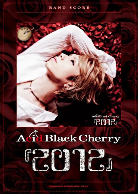 Acid Black Cherry『2012』